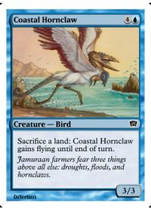 Coastal Hornclaw
