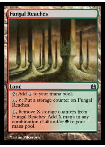 Fungal Reaches