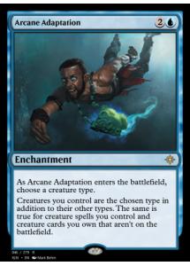 Arcane Adaptation