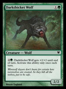 Darkthicket Wolf