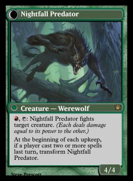 Nightfall Predator