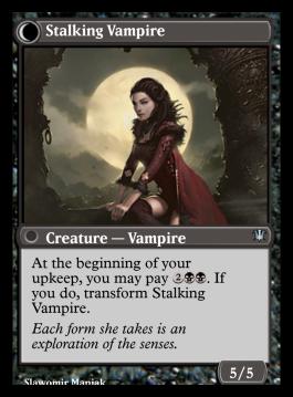 Stalking Vampire